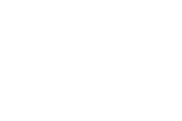 Charity Navigator 4 Star White